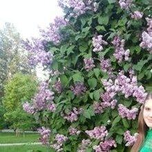 Счастных Марина Андреевна, г. Барнаул