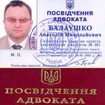 Балаушко Анатолий Николаевич