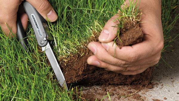 Земельный участок могут отобрать еще и за ЭТО