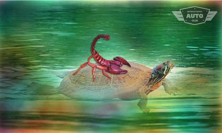 Скорпион из проволоки картинки