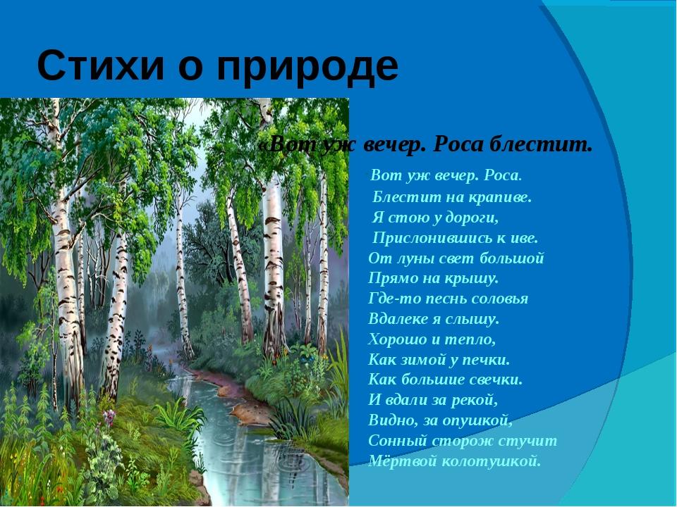 Стихи омских поэтов о родной природе