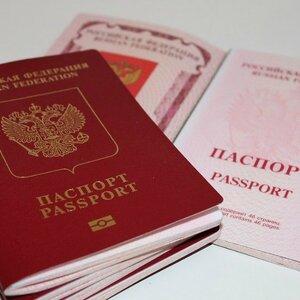 В России увеличат размер штрафа за подделку документов