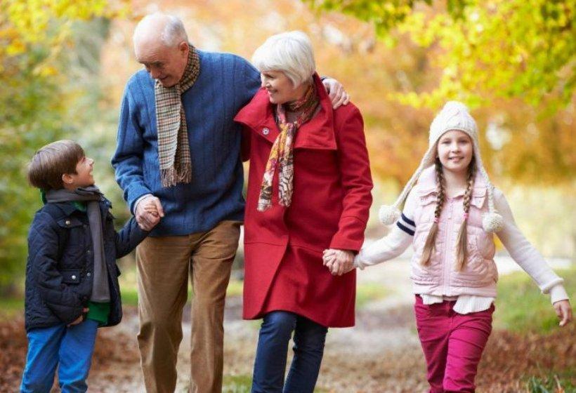 Алименты с бабушки и дедушки, можно ли подать на алименты на родителей мужа