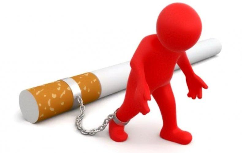 требования торговли табачными изделиями