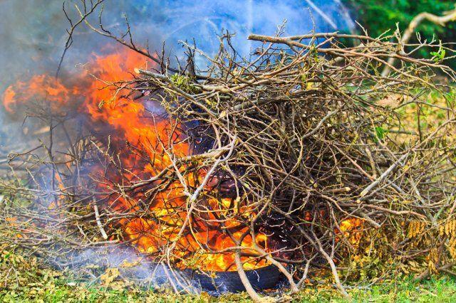 Штраф за сжигание листвы на участке