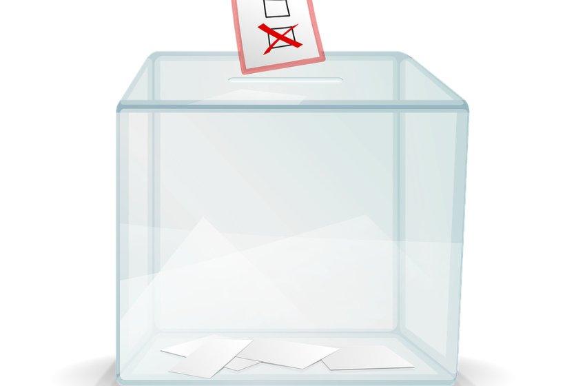 Стали известны варианты нового названия избирательной урны