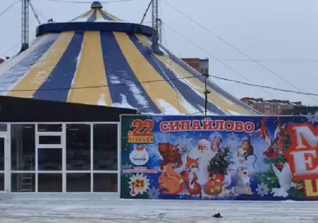 Судебные приставы прервали представление в уфимском цирке