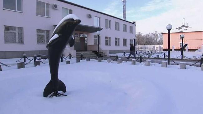 Заключенным «Черного дельфина» не хватает полмиллиона на медобследование