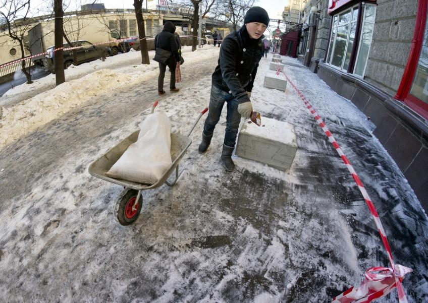 Жители Москвы потребовали от властей города прекратить травить их реагентами