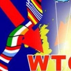 Мы вступили в ВТО. Много нас, оно - одно