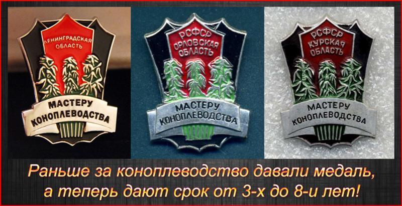 Марихуану почему в россии запрещают марихуану быстро вывести организма