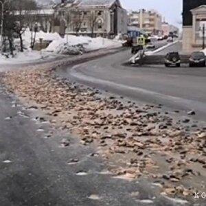 В Петропавловск-Камчатске напротив здания правительства случайно опрокинули 8 тонн рыбных отходов