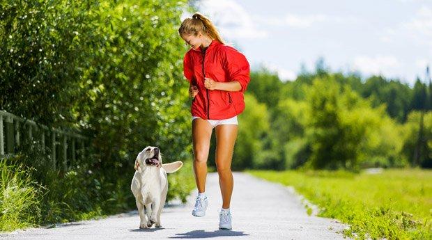 Гулять с собакой можно везде, кроме особо оговоренных мест!