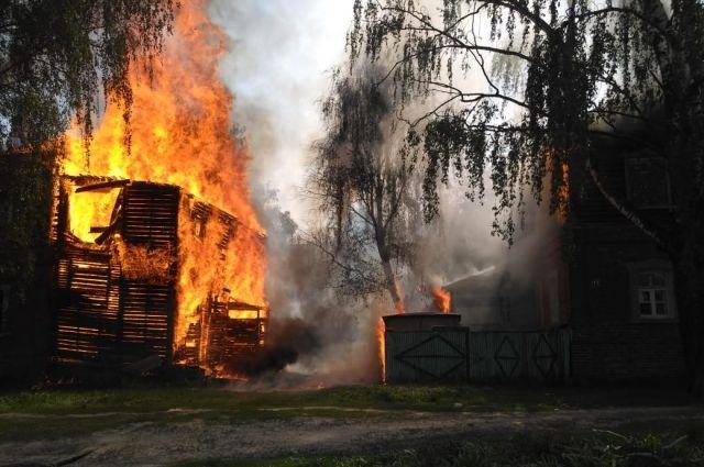 Пожары, мародеры и лицемерие Совета по правам человека при Путине