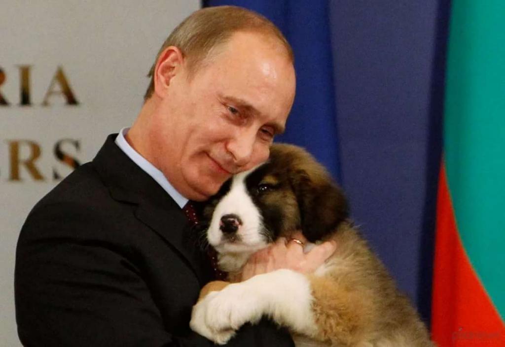 Президент РФ подписал закон о защите животных