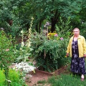 Волгоградские власти хотят наказать пенсионерку на 50 тысяч за цветущий сад под окном.