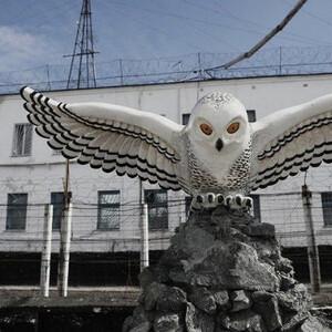 Колония «Полярная сова»: как отбывают срок пожизненно осужденные