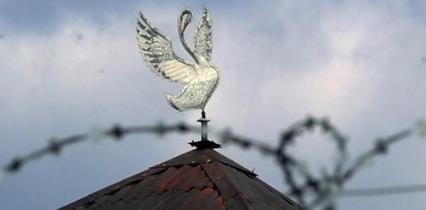 «Белый лебедь» — последний приют: как живут в колонии для тех, кто получил пожизненный срок
