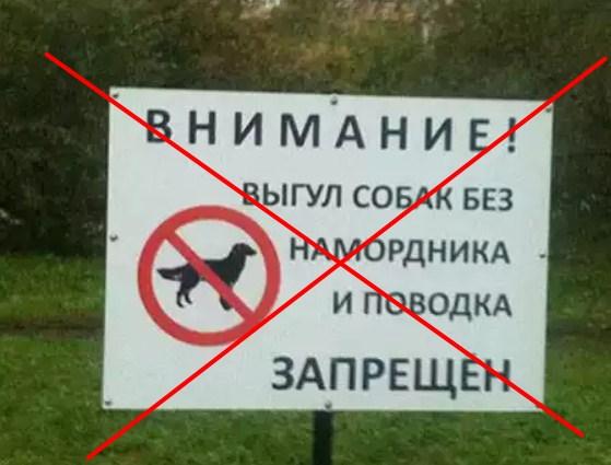 Собак освободили от намордников !