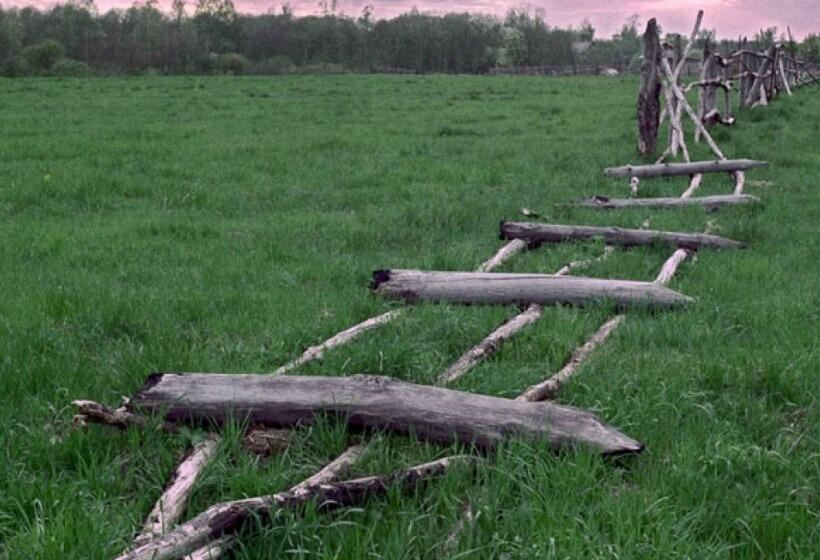 Как оформить брошенный земельный участок в свою собственность