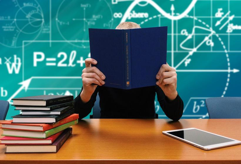 Высшее образование – залог успеха? Интересные факты. Часть 2