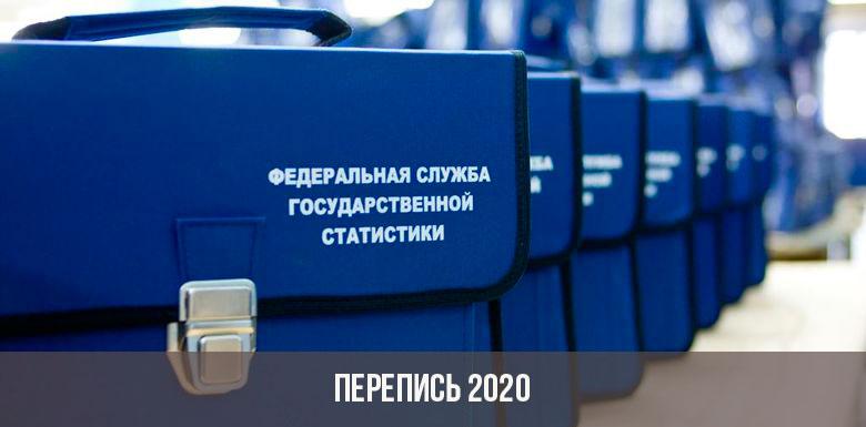 Электронная перепись населения в 2020 году