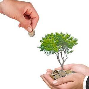Субсидии для бизнеса от государства, виды и как получить