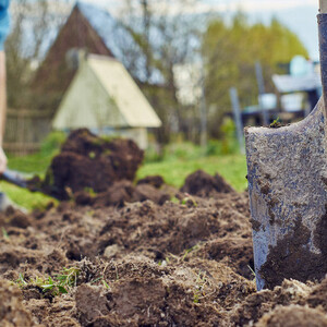 Новые налоговые льготы для дачников и огородников