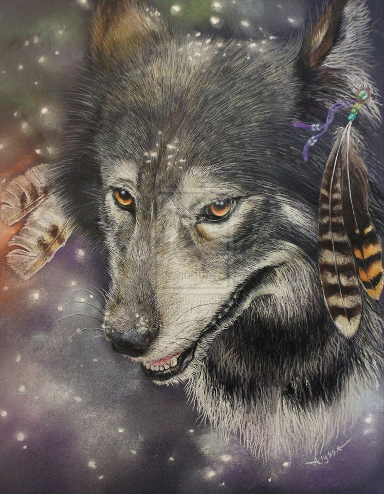 Волк и индейцы картинки