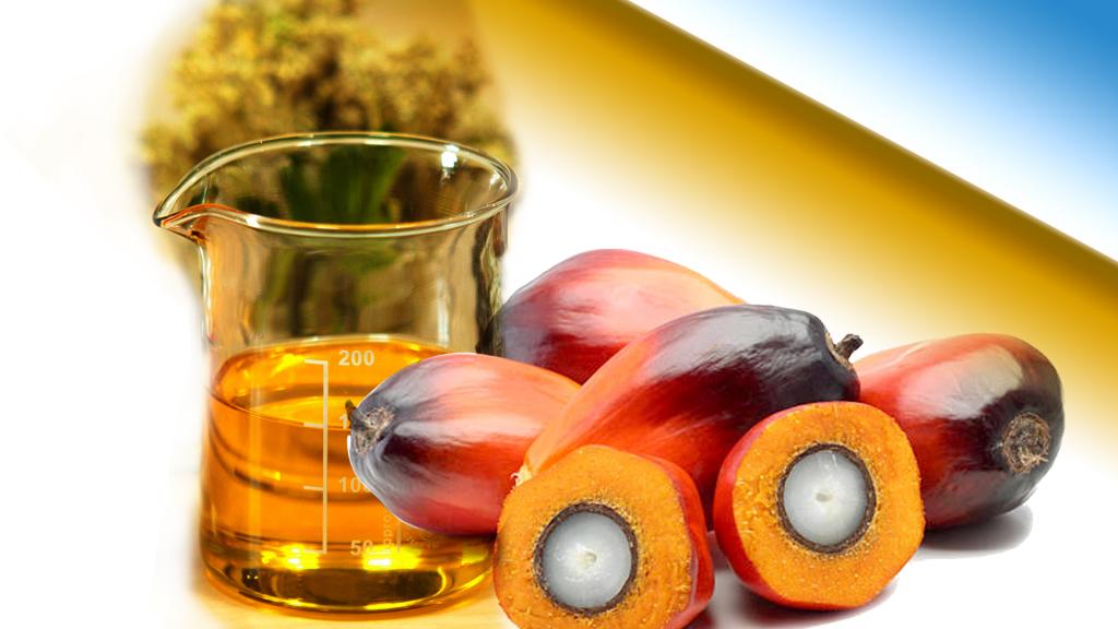 Пальмовое масло, какое количество безопасно для нашего здоровья!