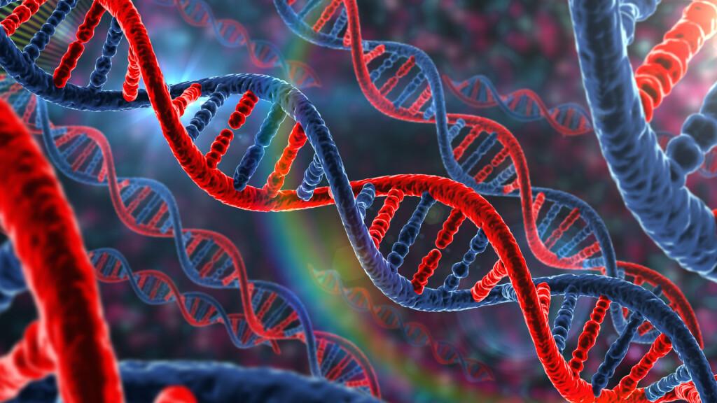 Как вас вычисляют по ДНК