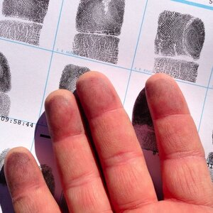 Дактилоскопия - Всё про отпечатки пальцев