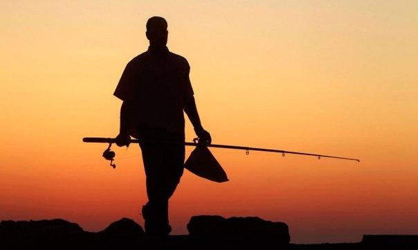 Удостоверения рыболовов с 2020 года станут обязательными. Что еще ждать от новой редакции ФЗ?