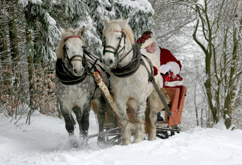 Россияне назвали самые желанные подарки от Деда Мороза