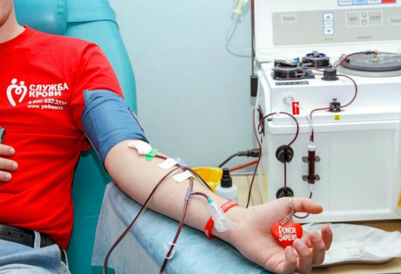 Донор крови сколько платят 2020