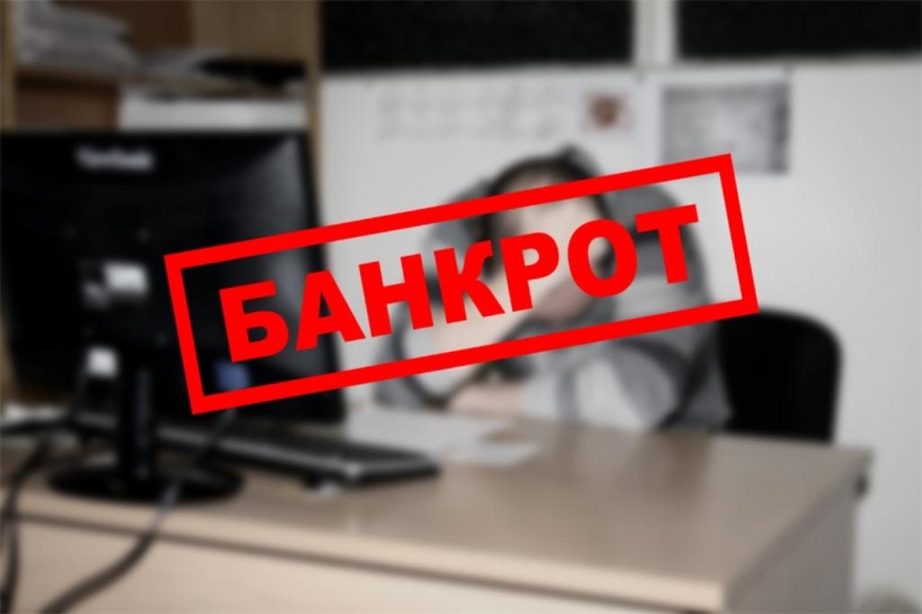 Банкротство физических лиц: Введение процедуры