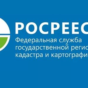 Координатором ФЦП по регистрации недвижимости станет Россрестр
