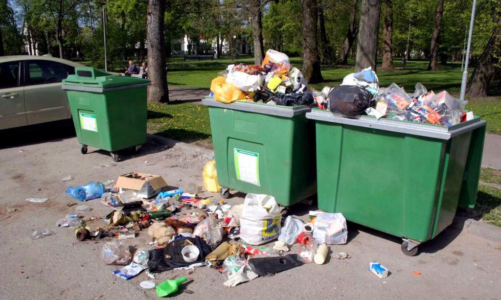 Когда за вывоз мусора платить не нужно: новые основания