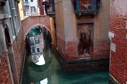 Вода в Венеции очистилась из-за коронавируса