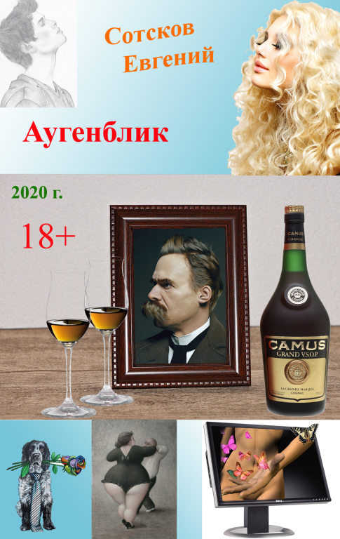 Отзыв о книге Евгения Сотскова Аугенблик