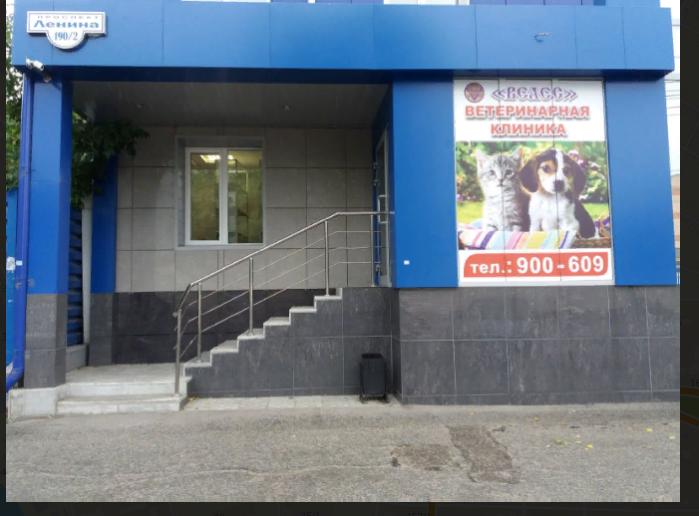 Велес ветеринарная клиника город Томск